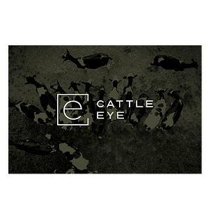 CattleEye logo