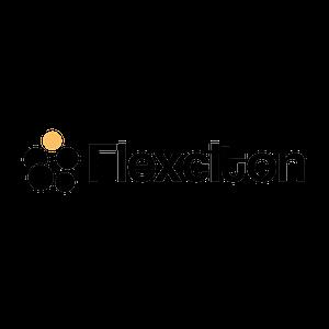 Flexciton logo